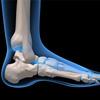 Emberi lábfej képe