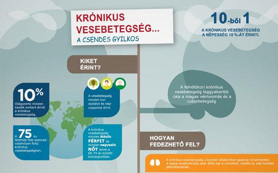 Krónikus vesebetegség (infografika)
