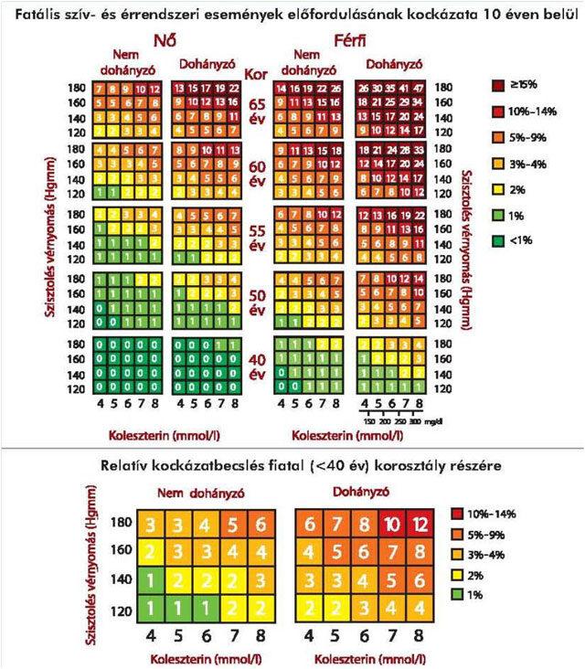 Halálos szív- és érrendszeri események előfordulásának kockázata 10 éven belül, Kép forrása: VII. Magyar Kardiovaszkuláris Konszenzus Konferencia 2017.
