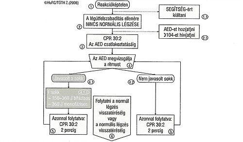 Defibrillátoros újraélesztés folyamat ábra