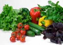 finom diéta a táplálkozási táplálkozók számára