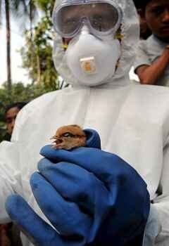 Az orvos válaszol: a világjárvány csak pánikkeltés?