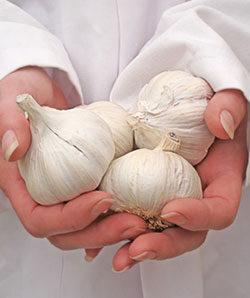 A rendszeres hagymafogyasztás előnyei - Hagymácska Cseppek