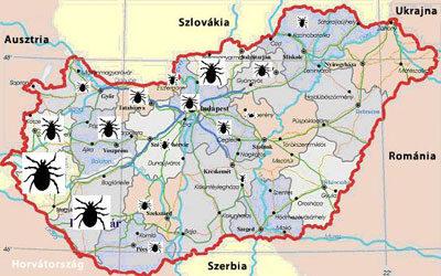 Kullancstérkép Magyarországról