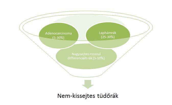 Nem-kissejtes tüdőrák típusok