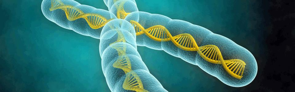 Genetikai és anyagcsere-betegségek