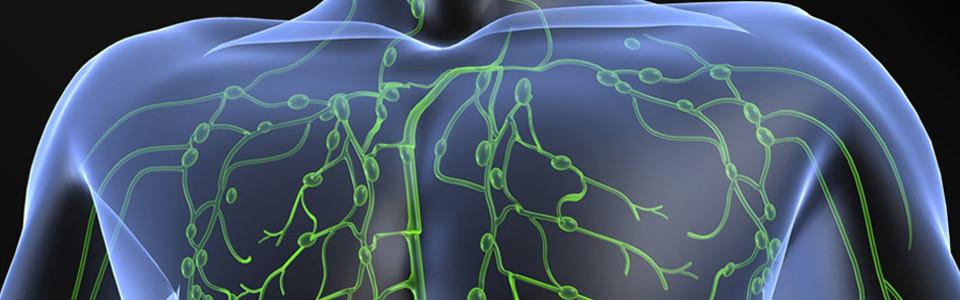 Endokrin betegségek