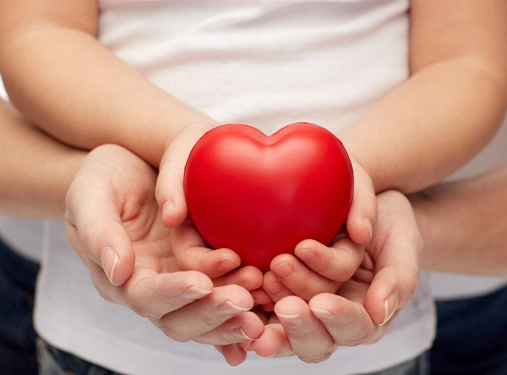 szív- és érrendszer